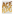 Aceology Anti Aging Gold Modeling Mask 4 Pack by Aceology