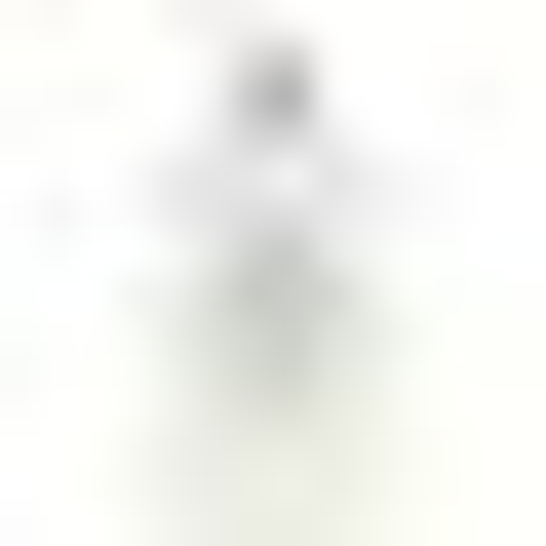 Circa Home Mango & Papaya Hand Wash 450ml by Circa Home