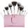 Designer Brands Melodrama 10 Piece Brush Set
