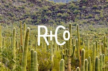R& Co Hair